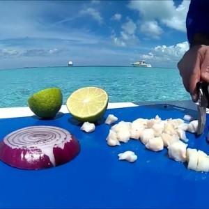 Solo Survival Fishing Miami to Bimini Conch Salad Survival skills - YouTube